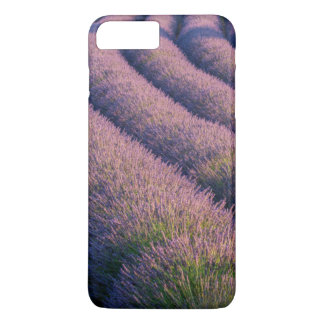 Rows of lavender in Provence iPhone 8 Plus/7 Plus Case