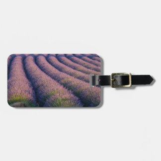 Rows of lavender in Provence Luggage Tags