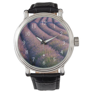 Rows of lavender in Provence Wristwatch