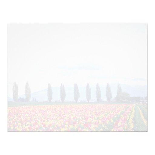 Rows Of Mixed Tulips flowers Custom Letterhead