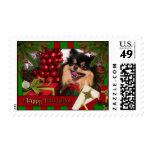 Roxanne - Pomeranian - Brenda Stamp