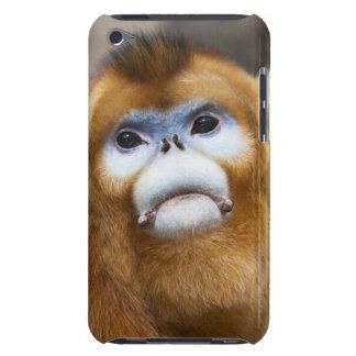 Roxellana de oro masculino de Pygathrix del mono,  Barely There iPod Protector