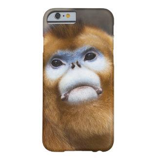 Roxellana de oro masculino de Pygathrix del mono, Funda De iPhone 6 Barely There