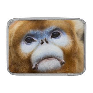 Roxellana de oro masculino de Pygathrix del mono Fundas Para Macbook Air