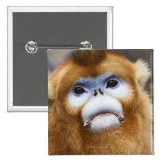 Roxellana de oro masculino de Pygathrix del mono,  Pin Cuadrada 5 Cm