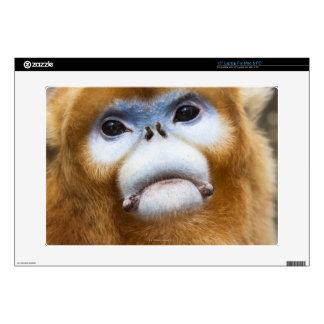 Roxellana de oro masculino de Pygathrix del mono Portátil Skin