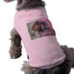 Roxie Camisa De Perro