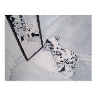 Roxie el Dalmatian Tarjetas Postales