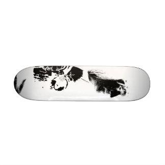 Roxxy Skate board