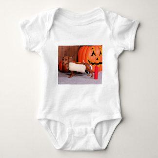 Roxy - Mini Dachshund - Elliott Shirts