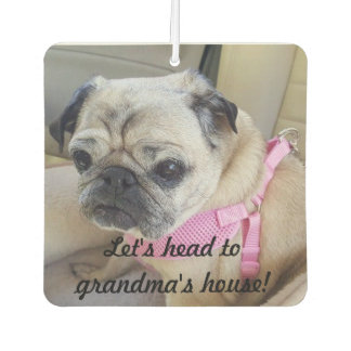 Roxy the pug air freshener