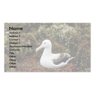Royal Albatross Business Card