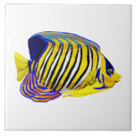 """Royal Angelfish Ceramic Tile<br><div class=""""desc"""">This colorful Royal Angelfish in black,  yellow white and blue is great for those looking for nautical themed artwork. Use in a DIY project,  frame it or tile the bath.</div>"""