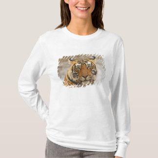 Royal Bengal Tiger - a portrait, Ranthambhor T-Shirt