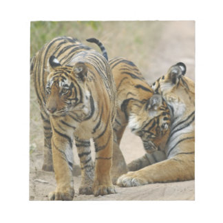 Royal Bengal Tiger and young ones - touching Note Pads