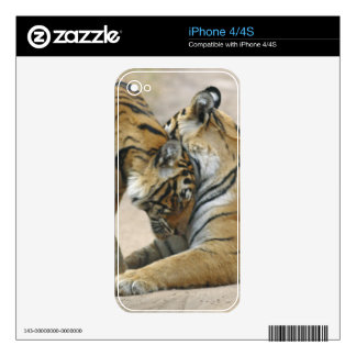 Royal Bengal Tiger and young ones - touching Skins For The iPhone 4S