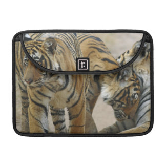 Royal Bengal Tiger and young ones - touching Sleeve For MacBooks