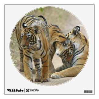Royal Bengal Tiger and young ones - touching Wall Sticker