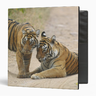 Royal Bengal Tiger and young - Touching ahead, Binder