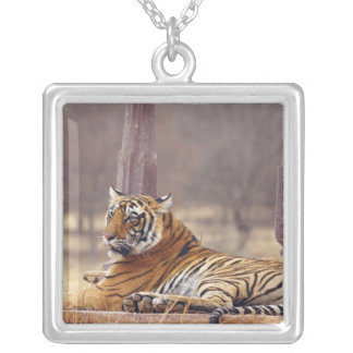 Royal Bengal Tiger at the ceaph, Silver Plated Necklace