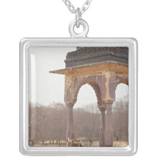 Royal Bengal Tiger at the cenotaph, Ranthambhor Silver Plated Necklace