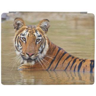 Royal Bengal Tiger at the waterhole iPad Cover