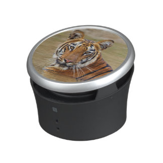Royal Bengal Tiger at the waterhole Speaker