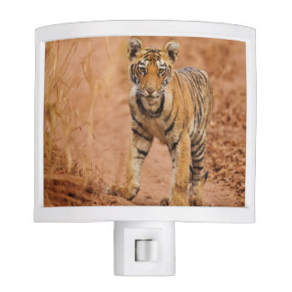 Royal Bengal Tiger cub on the move Night Light