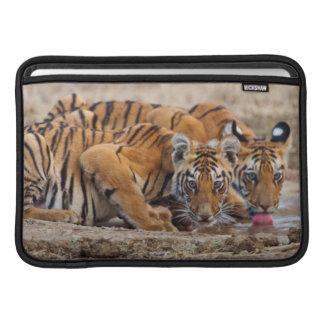 Royal Bengal Tiger cubs at the waterhole MacBook Sleeves
