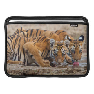 Royal Bengal Tiger cubs at the waterhole MacBook Sleeve