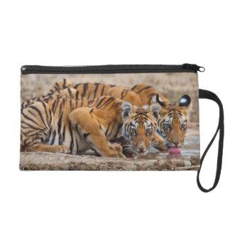 Royal Bengal Tiger cubs at the waterhole Wristlet Purse