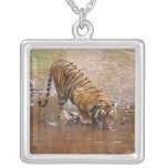 Royal Bengal Tiger drinking water at the Personalized Necklace