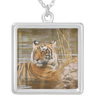 Royal Bengal Tiger in the forest pond, Silver Plated Necklace