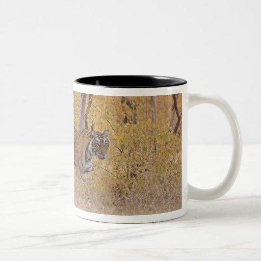 Royal Bengal Tiger in the forest, Ranthambhor Coffee Mug