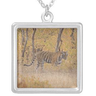 Royal Bengal Tiger in the forest, Ranthambhor Silver Plated Necklace