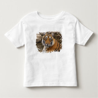 Royal Bengal Tiger in the jungle pond, Shirt