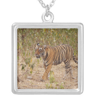 Royal Bengal Tiger moving around the bush, Silver Plated Necklace