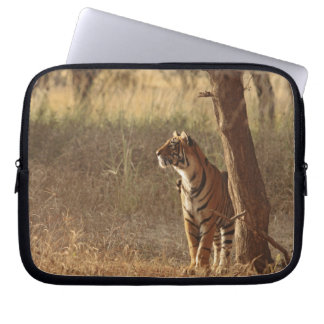 Royal Bengal Tiger on look out for prey, Laptop Sleeve