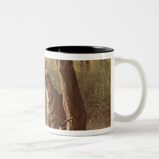 Royal Bengal Tiger on look out for prey, Two-Tone Coffee Mug