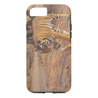 Royal Bengal Tiger on the move, Ranthambhor iPhone 7 Case