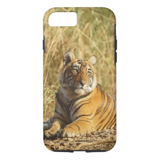 Royal Bengal Tiger outside the grassland, iPhone 8/7 Case