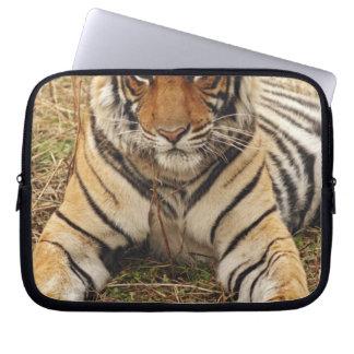Royal Bengal Tiger, Ranthambhor National Park, Computer Sleeve
