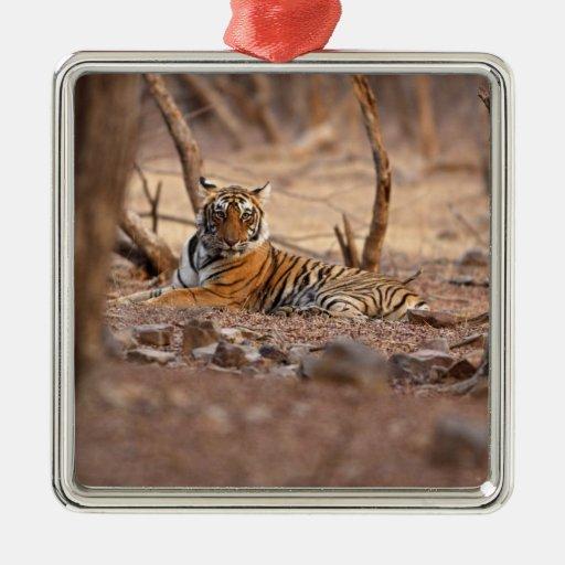 Royal Bengal Tiger, Ranthambhor National Park, Metal Ornament