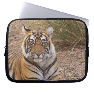 Royal bengal Tiger sitting outside grassland, Computer Sleeve