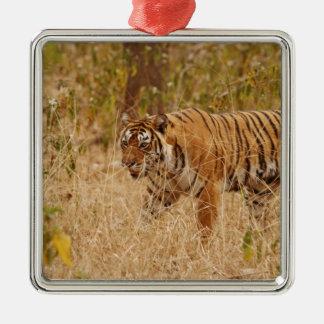 Royal Bengal Tiger walking around the bush, Ornament