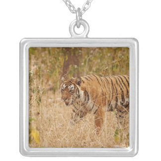Royal Bengal Tiger walking around the bush, Silver Plated Necklace