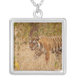 Royal Bengal Tiger walking around the bush, Square Pendant Necklace