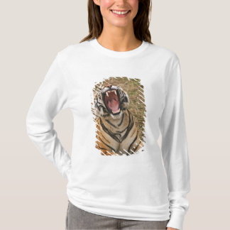 Royal Bengal Tiger yawning, Ranthambhor T-Shirt