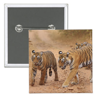 Royal Bengal Tigers on the move, Ranthambhor 2 Button