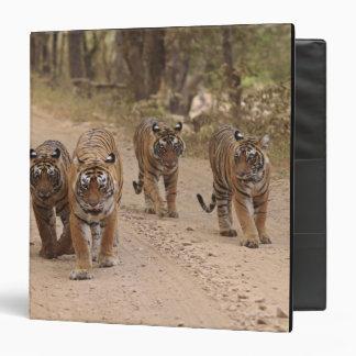 Royal Bengal Tigers on the track, Ranthambhor 5 Binder
